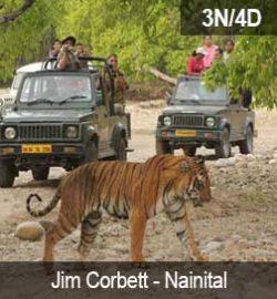 Jim-Corbett–Nainital